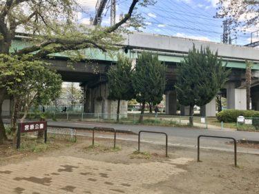 【宮原公園|さいたま市北区】子どもから小中学生も楽しめる公園