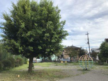 【鈴浦公園|さいたま市北区】植竹町にある縦長な公園