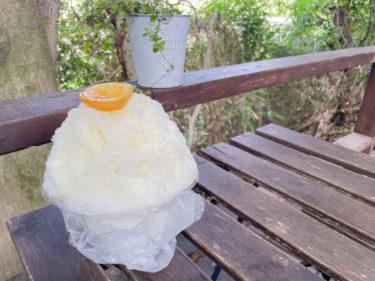 指扇「ライアンマルニ Ryan02」で絶品かき氷をテイクアウト